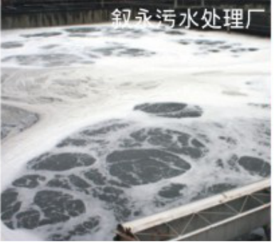 叙永污水处理厂